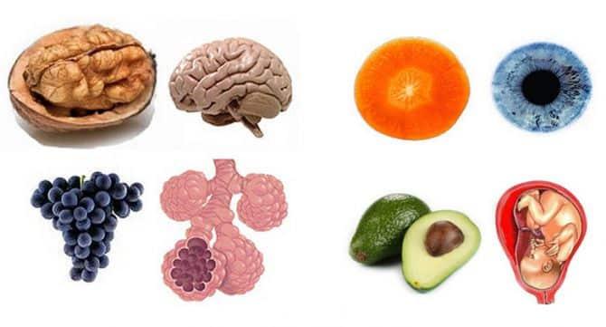 10-храни-които-наподобяват-частите-на-тялото-evolife.bg