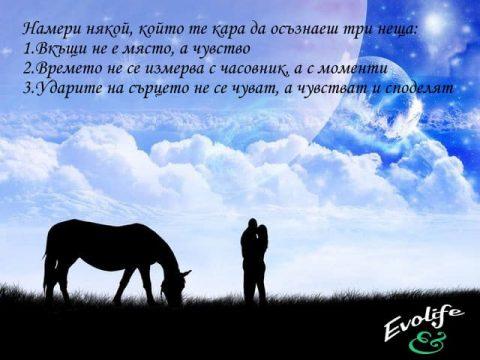 evolife.bg-nameri-nqkoi-koito-te-kara-da-osuznaesh