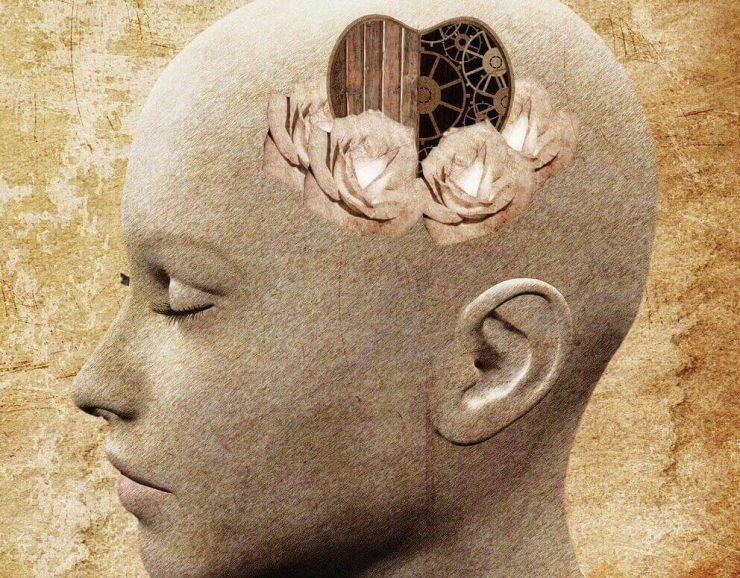 5-elementa-na-emocionalna-inteligentnost-evolife-bg
